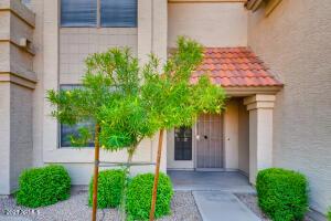3930 W MONTEREY Street, 114, Chandler, AZ 85226