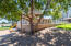 Tree House/ Home #2