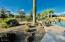13305 W CORONADO Road, Goodyear, AZ 85395