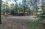 2871 OLD RIM Road, Forest Lakes, AZ 85931