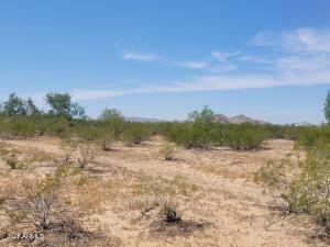 00 S Herrera Road, 49, Maricopa, AZ 85139
