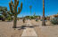 Tons of natural desert landscaping in the community