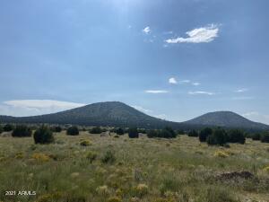 2872 E Spring Valley Road, Williams, AZ 86046