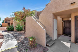 Welcome to the Cactus Flats community in North Glendale!