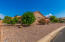 15536 W ROANOKE Avenue, Goodyear, AZ 85395