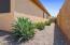 24830 W DOVE Trail, Buckeye, AZ 85326