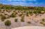 17736 W PASEO Way, 10, Goodyear, AZ 85338