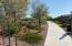 Beautiful walking paths throughout the neighborhood