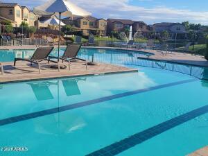 4077 S SABRINA Drive, 79, Chandler, AZ 85248