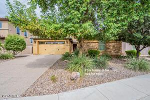 1618 W SWAN Place, Chandler, AZ 85286