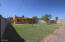 Grassy back yard