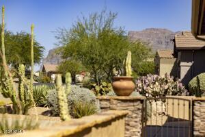 4127 S TIGRE DEL MAR Drive, Gold Canyon, AZ 85118