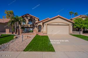 11402 S 44TH Street, Phoenix, AZ 85044