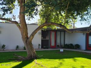 4204 N 38TH Street, 3, Phoenix, AZ 85018
