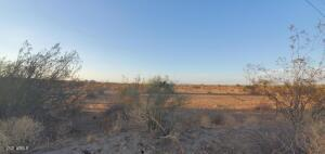 292 W Patton, a near 5 acre road-adjacent parcel in Wittman, AZ. On-site, view North from road.