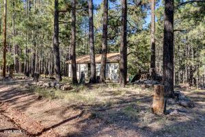 2119 TURKEY Trail, Forest Lakes, AZ 85931
