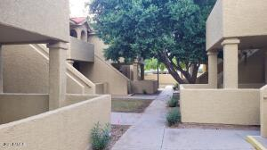 1126 W ELLIOT Road, 1004, Chandler, AZ 85224