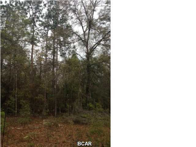 Photo of LOT 51 PAYNE LAKES Road Chipley FL 32428