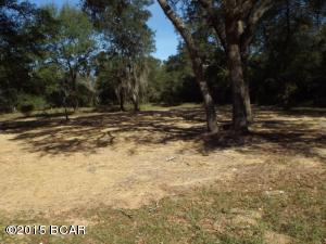 4006 WOOD DUCK Trail, Chipley, FL 32428