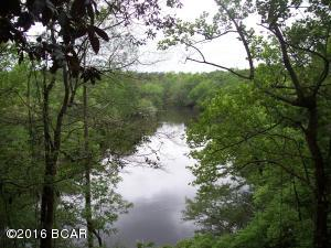 Chipola River From Bluff