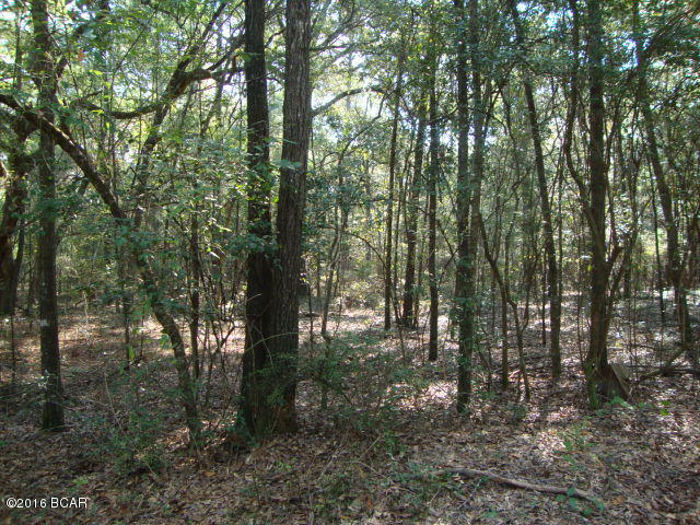 Photo of 0 OLIVE LANE Bonifay FL 32425