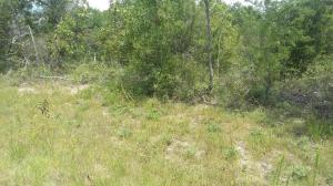 #00 DELTONA, LOT 15, Chipley, FL 32428