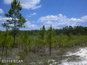 12135 HIGHWAY 77, Southport, FL 32409