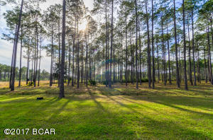 nice lot for your custom home
