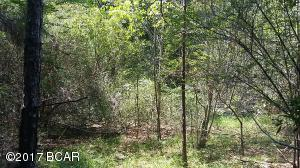 Private, rural lot in Holmes County, FL
