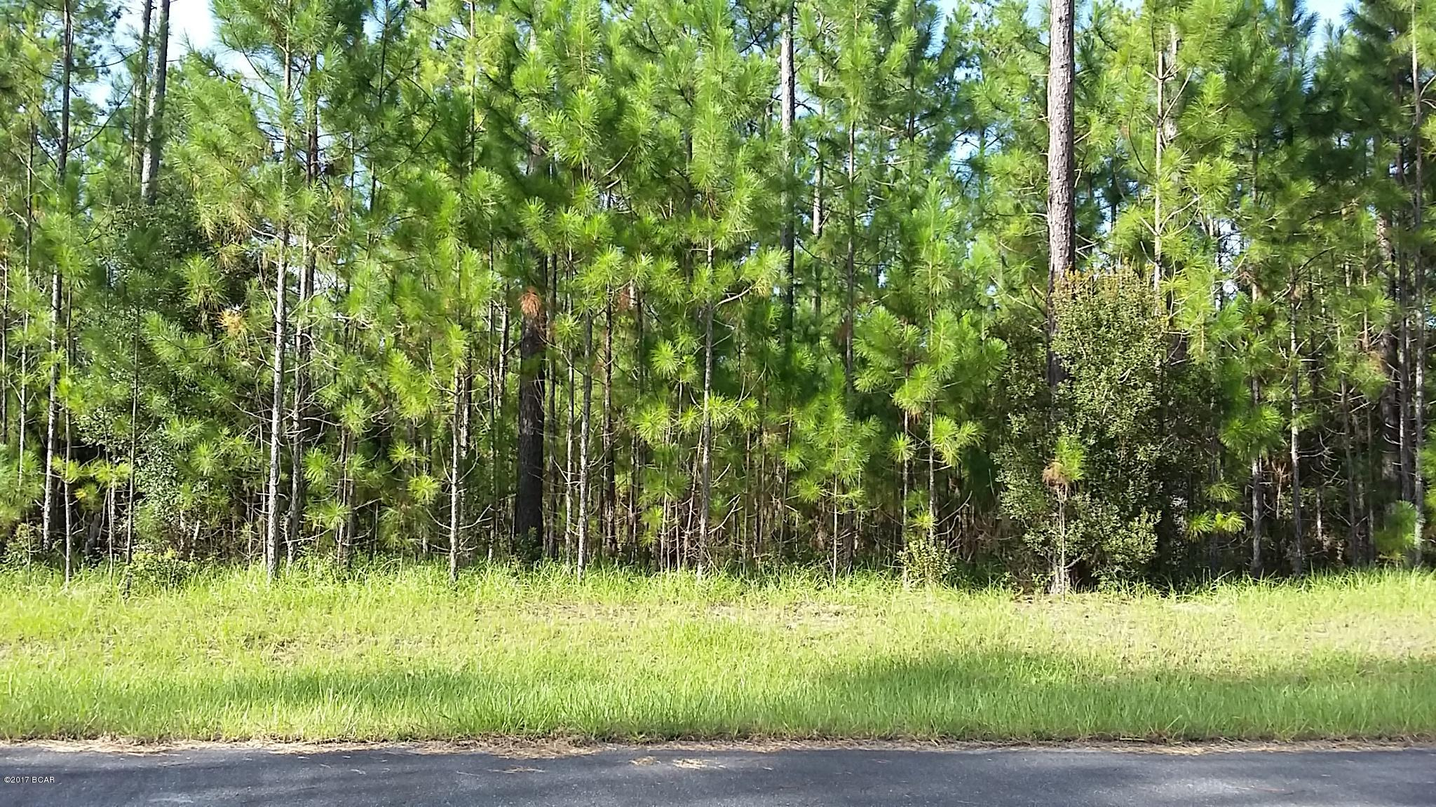 Photo of 4 ACRES CYPRESS CROSSING Road Vernon FL 32462