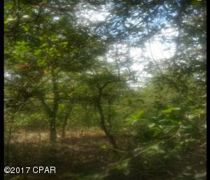 0000 PEPPERVINE PLACE, Chipley, FL 32428