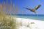 23223 FRONT BEACH Road, 735, Panama City Beach, FL 32413