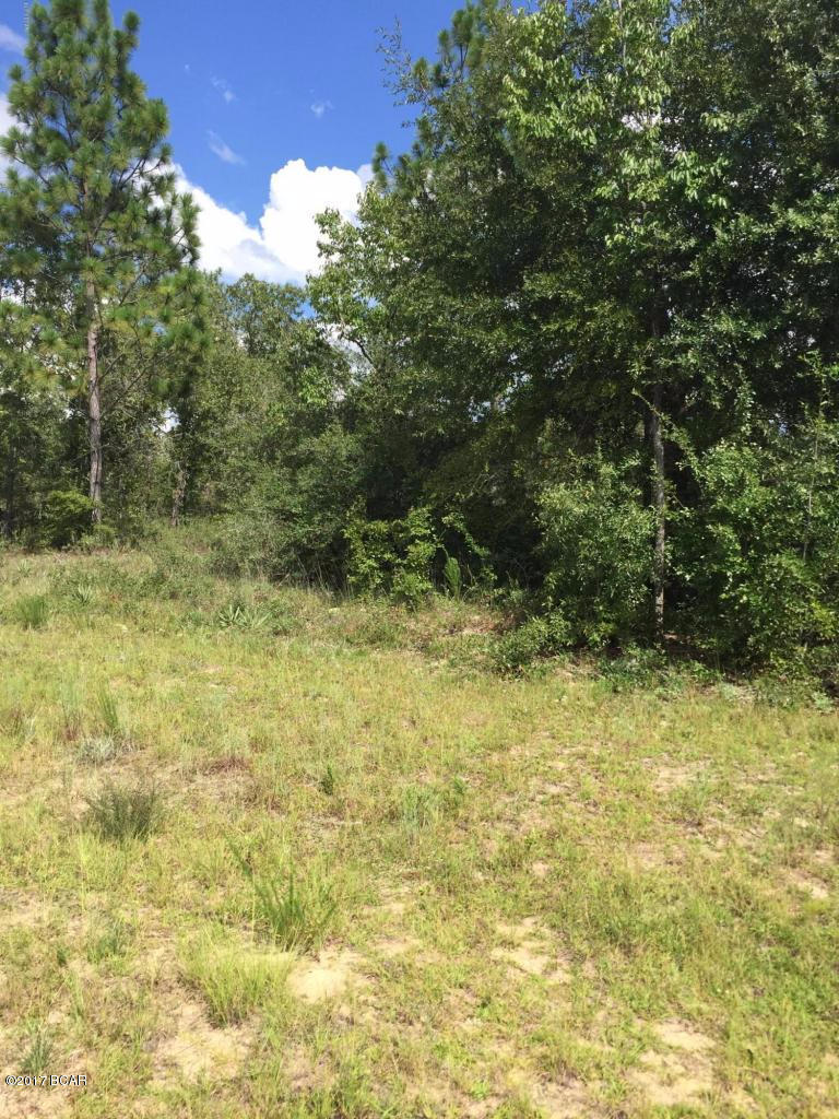 Photo of LOT 12 AMHERST Drive Chipley FL 32428