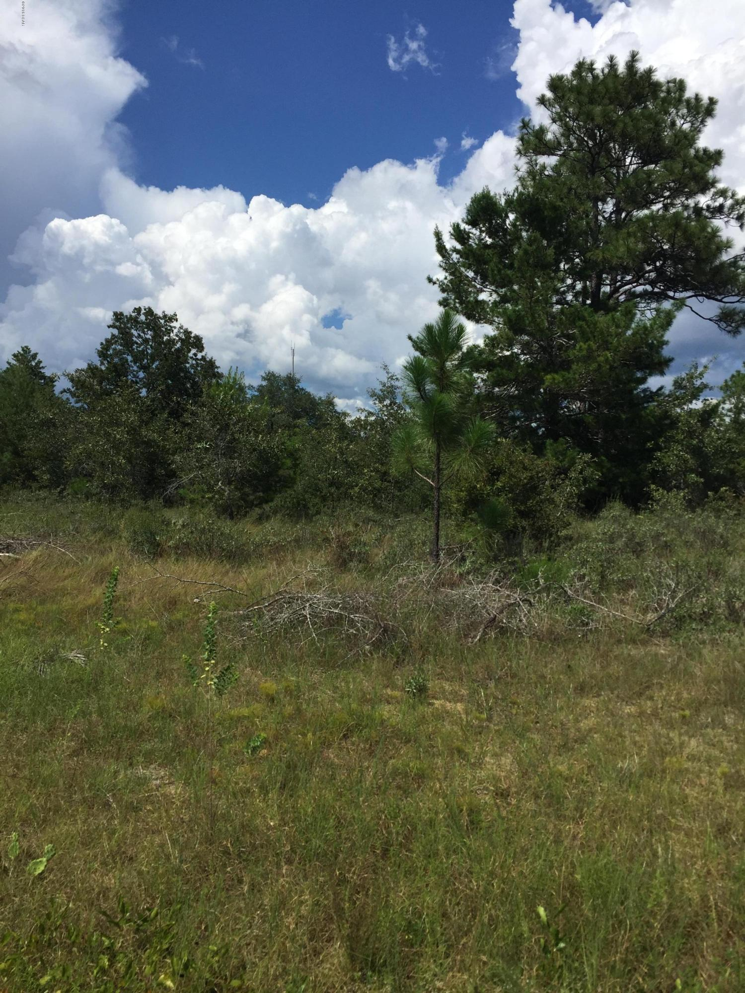 Photo of LOT 31 VELVET Drive Chipley FL 32428