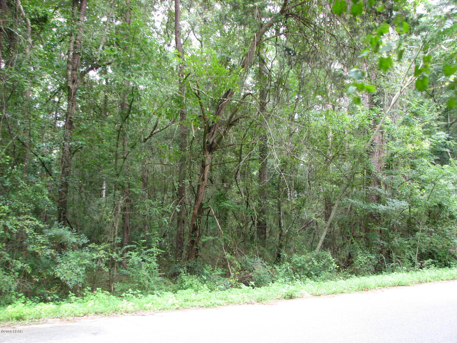 Photo of 000 PAULK Road Marianna FL 32446