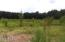 Unrestricted pasture land