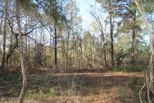 Photo of 0 HOLLISTER Road Marianna FL 32446