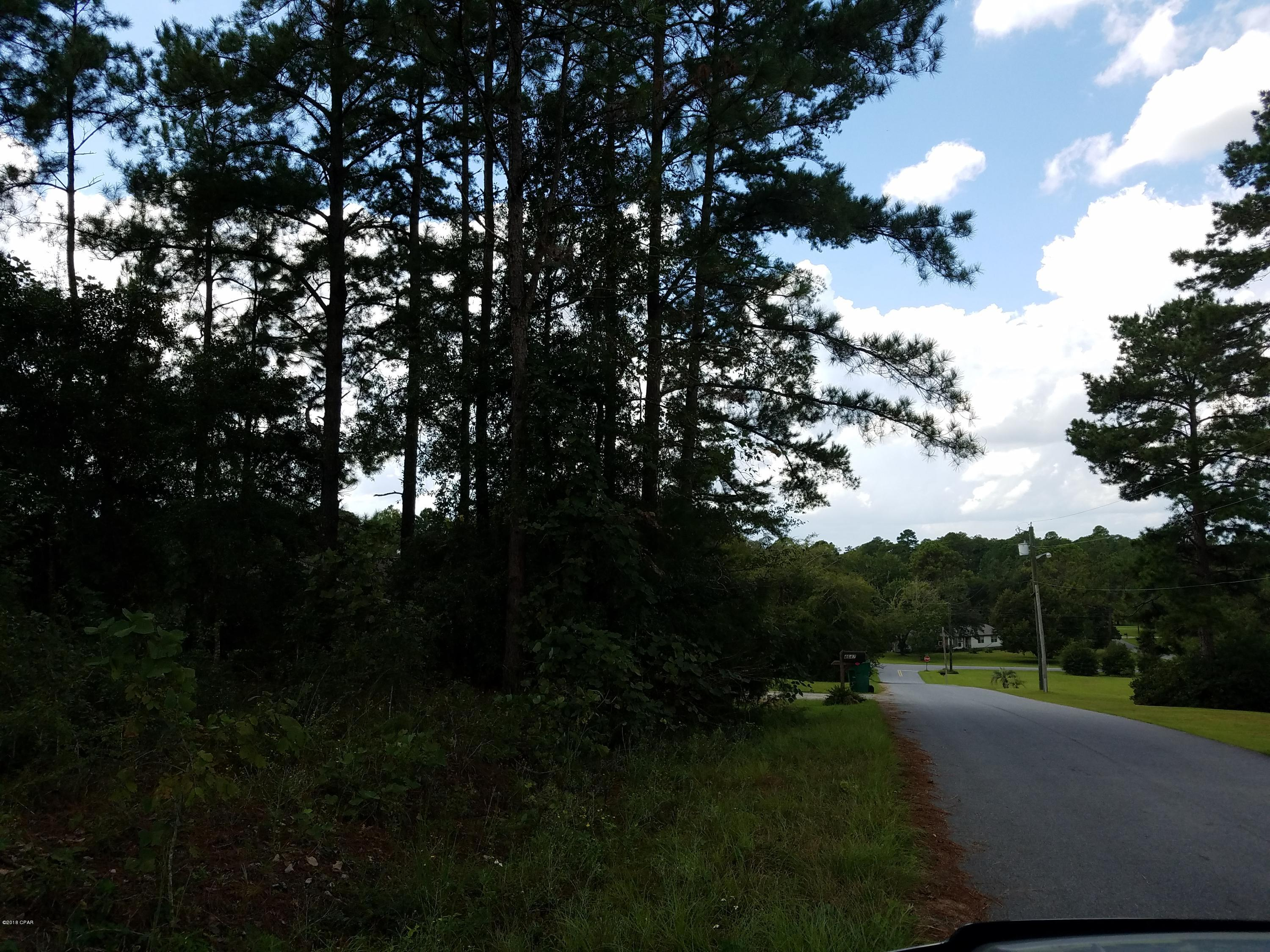 Photo of 4653 SHANKLE Drive Marianna FL 32446