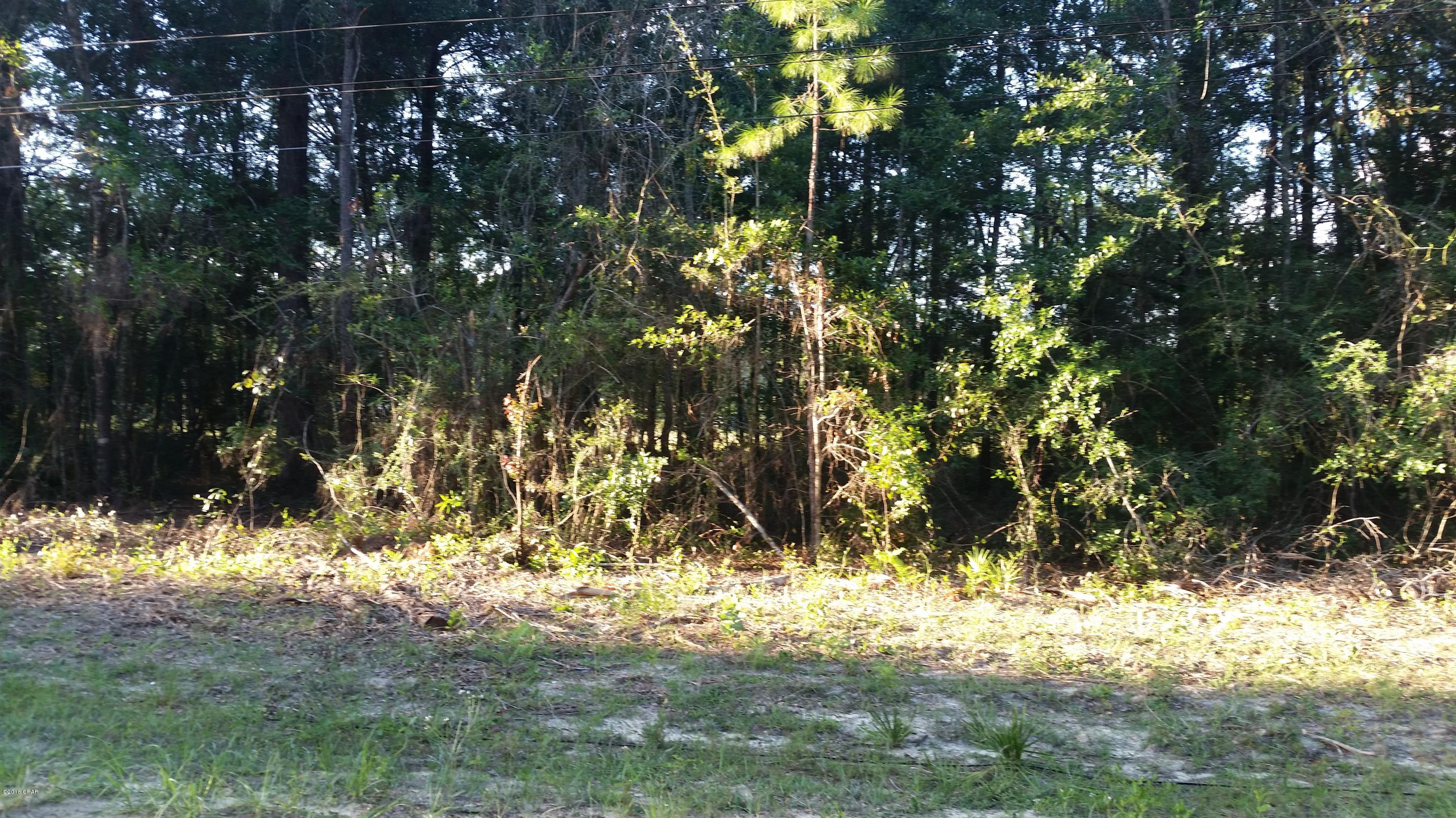 Photo of 0 PINE RIDGE Road Fountain FL 32438