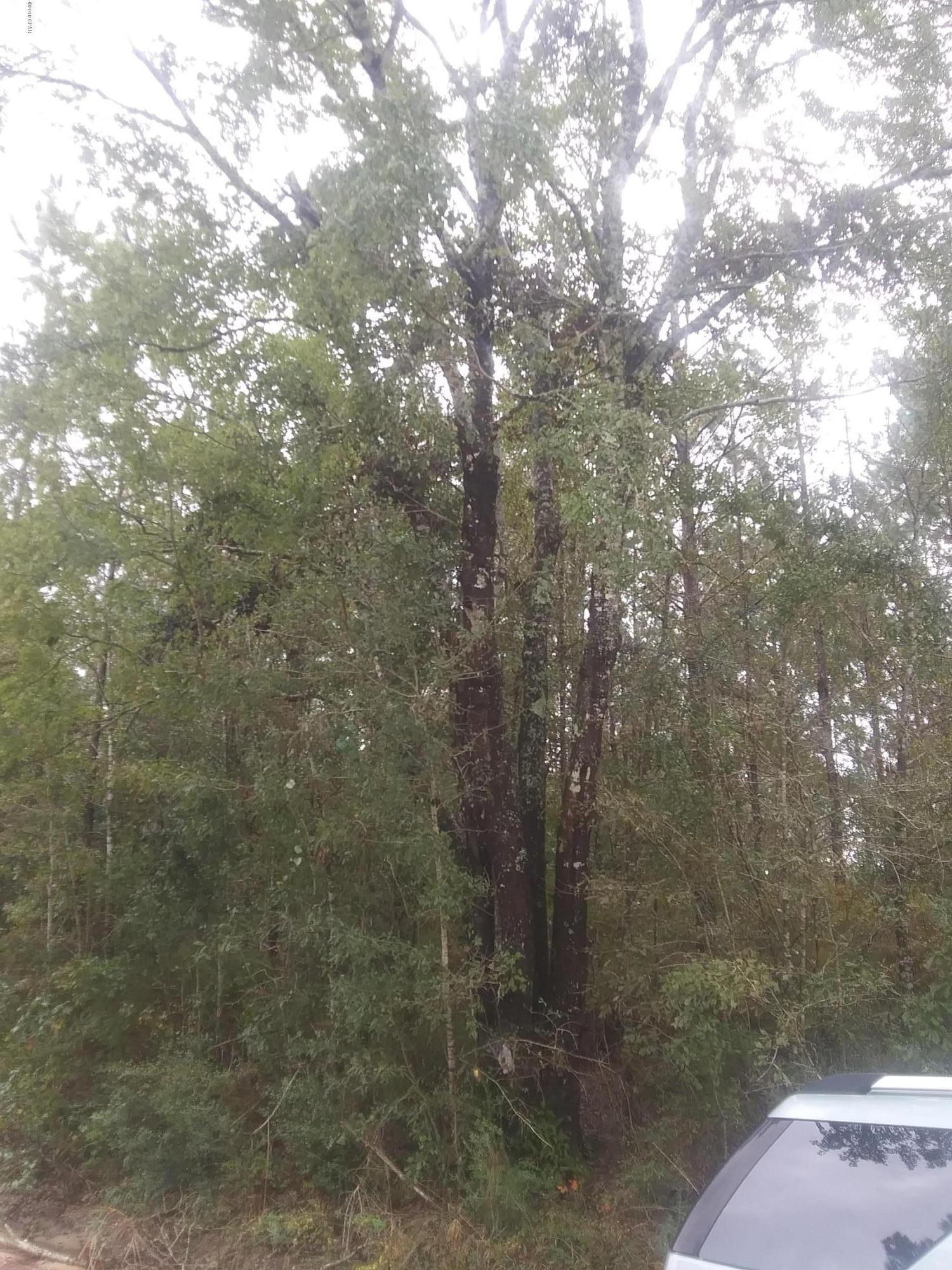 Photo of 2274 Willoughby Lane Caryville FL 32425
