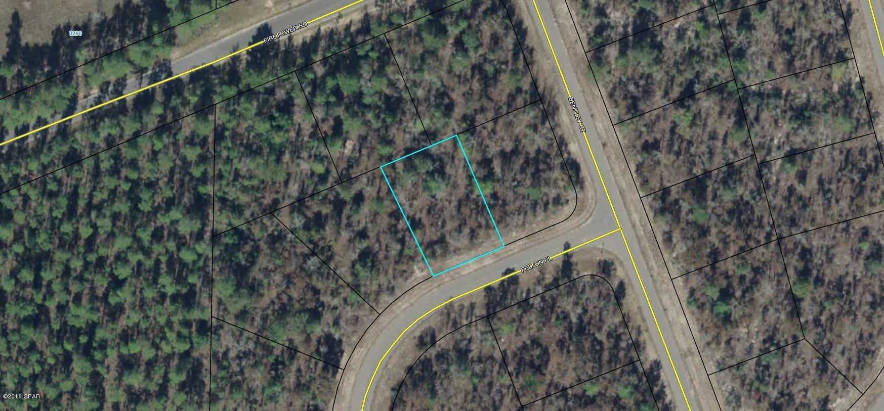 Photo of 0.234 Acre Felton Place Chipley FL 32428