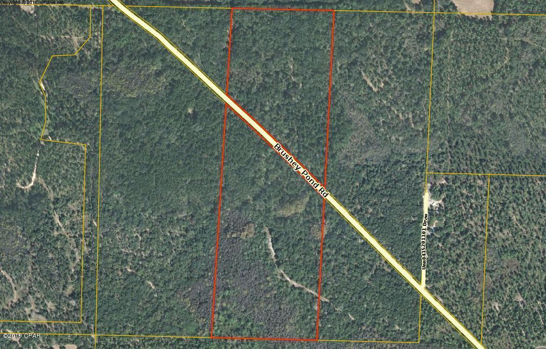 Photo of 00 Brushey Pond Road Grand Ridge FL 32442