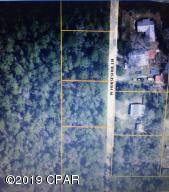 00 W Horseshoe Lane, Freeport, FL 32439