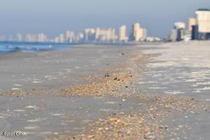 4715 Thomas Drive, 606D, Panama City Beach, FL 32408