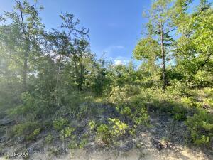 Lot 5 Goshun Creek Road