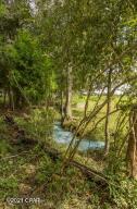 Creek running