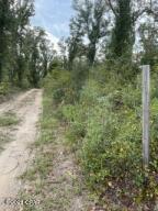 0000-2 NW Esta Sewell Road, Altha, FL 32421