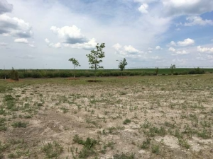 Property for sale at 0 31st Street SE, Dawson,  ND 58428