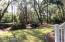 Lovely Wooded Back Yard