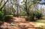 Charming Back Yard Pathway